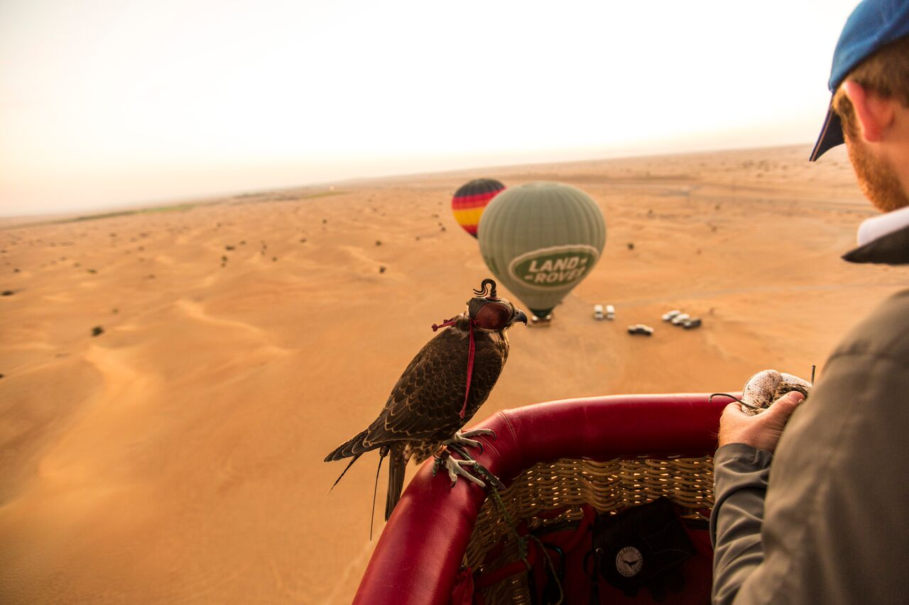 Tours in Dubai with a difference