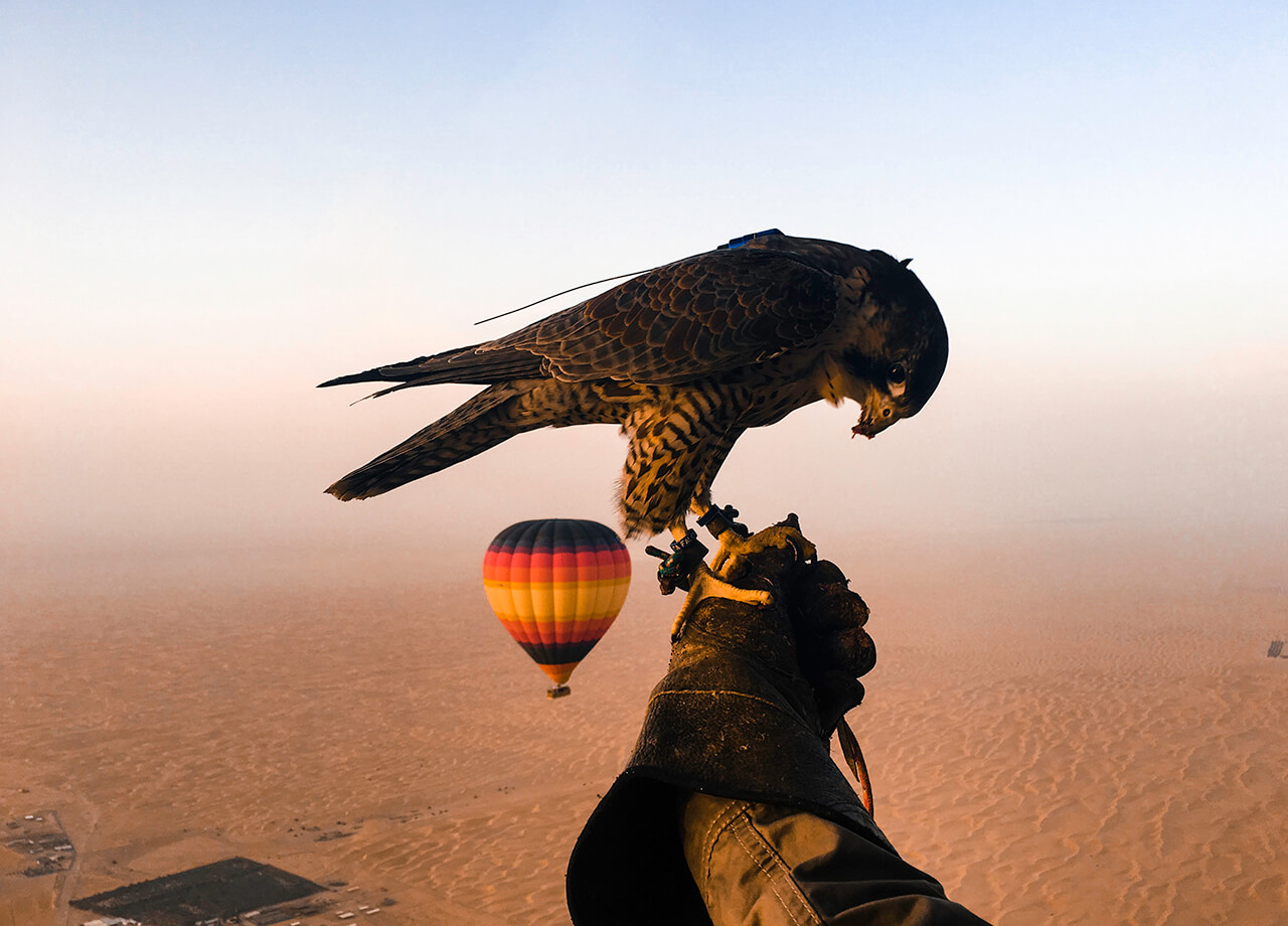 Best Hot Air Balloon Company Dubai